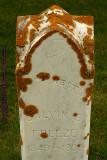 Lichen Gravestone2