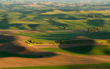 Morning on the Palouse2
