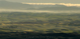Morning on the Palouse3