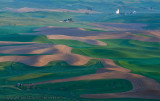 Morning on the Palouse4