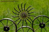 Spikey Wheel in Balance