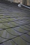 Bavo Church; roof