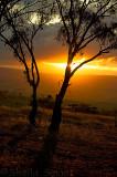 Mt Panorama sunset
