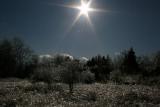 Sun and Ice 2