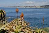 San Diego 2007