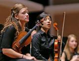Violins 0168.jpg