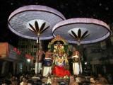 Thiruvallikeni Vijaya Varuda Brahmothsavam - Day 5 Evening - Hanumantha Vahanam