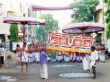 Thiruvallikeni Vijaya Varuda Brahmothsavam - Day 6 Morning - Anandha Vimana Uthsavam