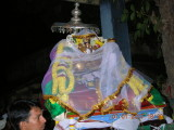 4-pani mukkADu -the veiled beauty of perumAL.JPG