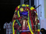 the rear side of kudhirai.JPG