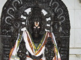 Sridhara Perumal - See Sankachakram