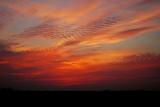 Sunset with Undulatus (Cloud Type)