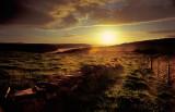 St David Sunset, Wales