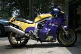 1100 purpleyellow rt side.JPG