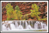 Untamed Havasu Creek