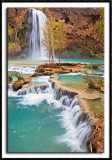 Havasu Falls and Cascades