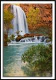 Havasu Falls Again