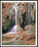 The Lush Grotto (vert)