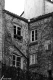 02-05-2007 : Hairy building / Immeuble poilu