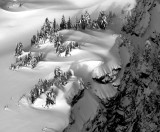 snow banks - Trees and Shadows Book