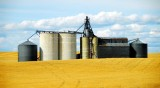 silos and wheatfield