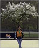 Blossom-Tree-Girl