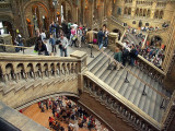 MC #112 - A Day Out:: A Busy Day at the Natural History Museum by Chris Gregory