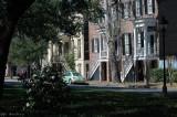 A glimpse of Savannah