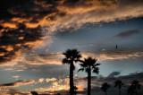 December 19- Pismo Beach Sunset