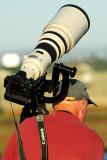 photographer at Bolsa Chica Wetlands