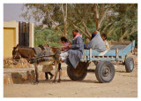 Siwa Family on the move