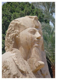 The Head of the Alabaster Sphinx, Memphis