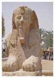 Alasbaster Sphinx, Memphis