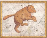 Plate6 - Great Bear (Big Dipper)