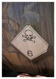 Label 6.1