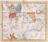 Tafel XXIV - Der Eridanus Fluss; der Grabstichel; der Brandenburgische Scepter; Orion; der Haase; die Taube; die Georgs Harffe
