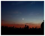 Regulus, Saturn, The Moon, Venus