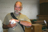 ...Peregrine chick in hand...