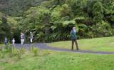 Back from their Bush walk