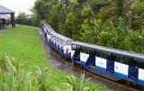 Rain Forest Express