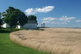 East Brandywine Wheat Field
