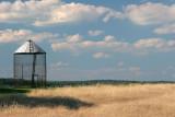 Wheat Field Silo