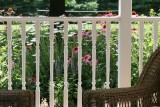 Sitting on the Porch