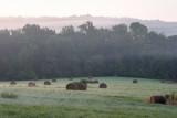 Pinkish Hills
