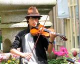 Cheery Fiddler