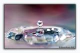 Water Drops - Gocce