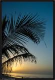 Beach - Oman