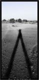 shadow_me.jpg