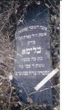Blima daughter of Menashe & wife of Tzvi