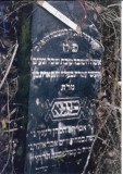 Feiga daughter of R' Avraham h'Cohen LENTZ  (There may be another name on this gravestone, as well.)